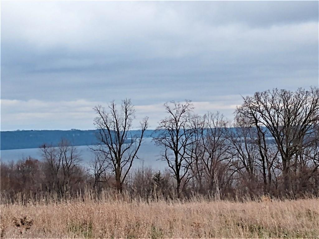 3.37 Acres 451st Street Property Photo - Maiden Rock, WI real estate listing