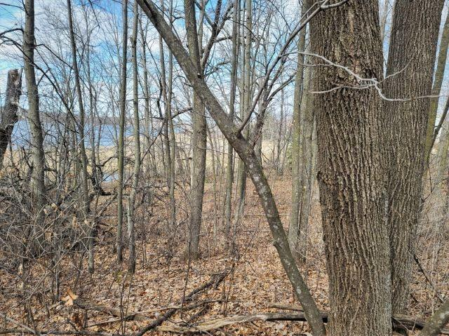 Lot 5 161st Street Property Photo - Luck, WI real estate listing