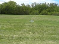Lot 17 Nelson Drive Property Photo - Elmwood, WI real estate listing