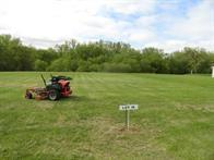 Lot 18 Nelson Drive Property Photo - Elmwood, WI real estate listing