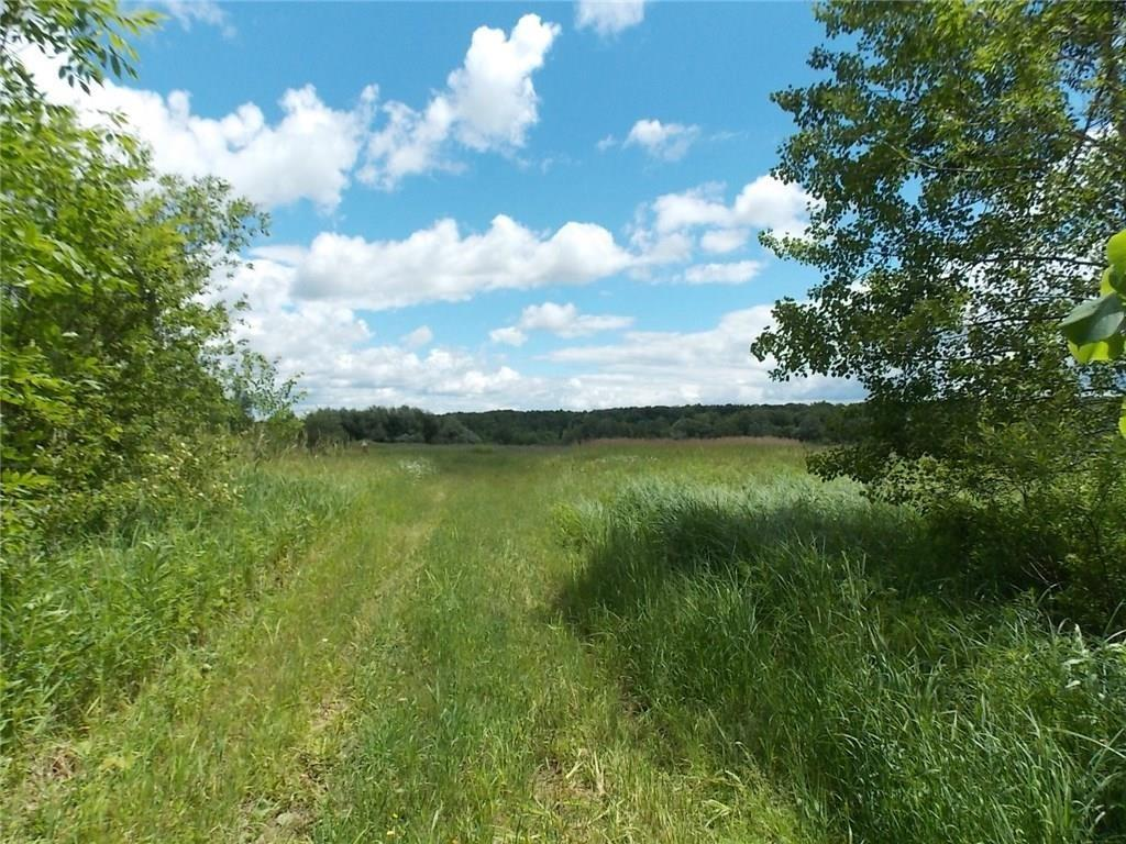 0 Cty Hwy O Property Photo - Weyerhaeuser, WI real estate listing
