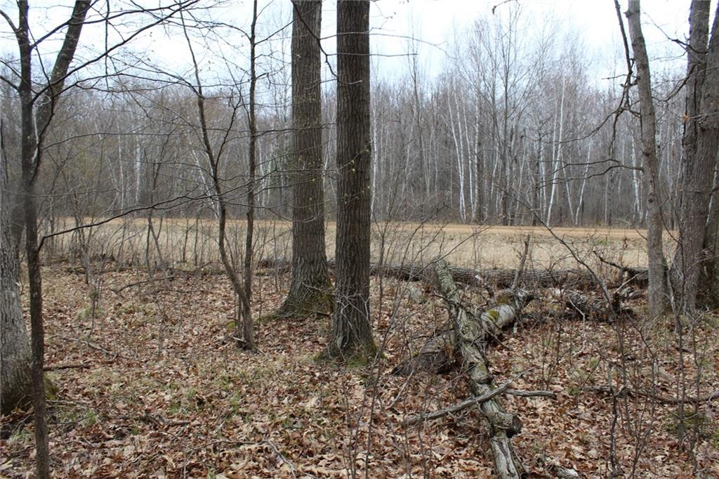 5 Acres River Road Property Photo