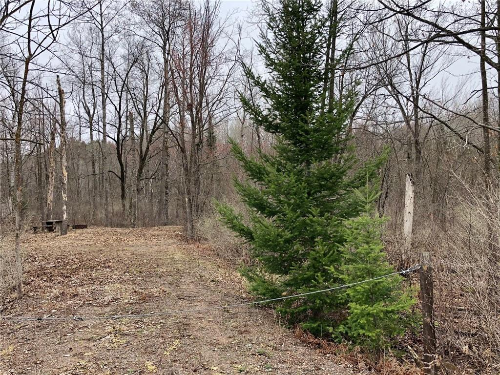 Lot 15 State Highway 40 Property Photo