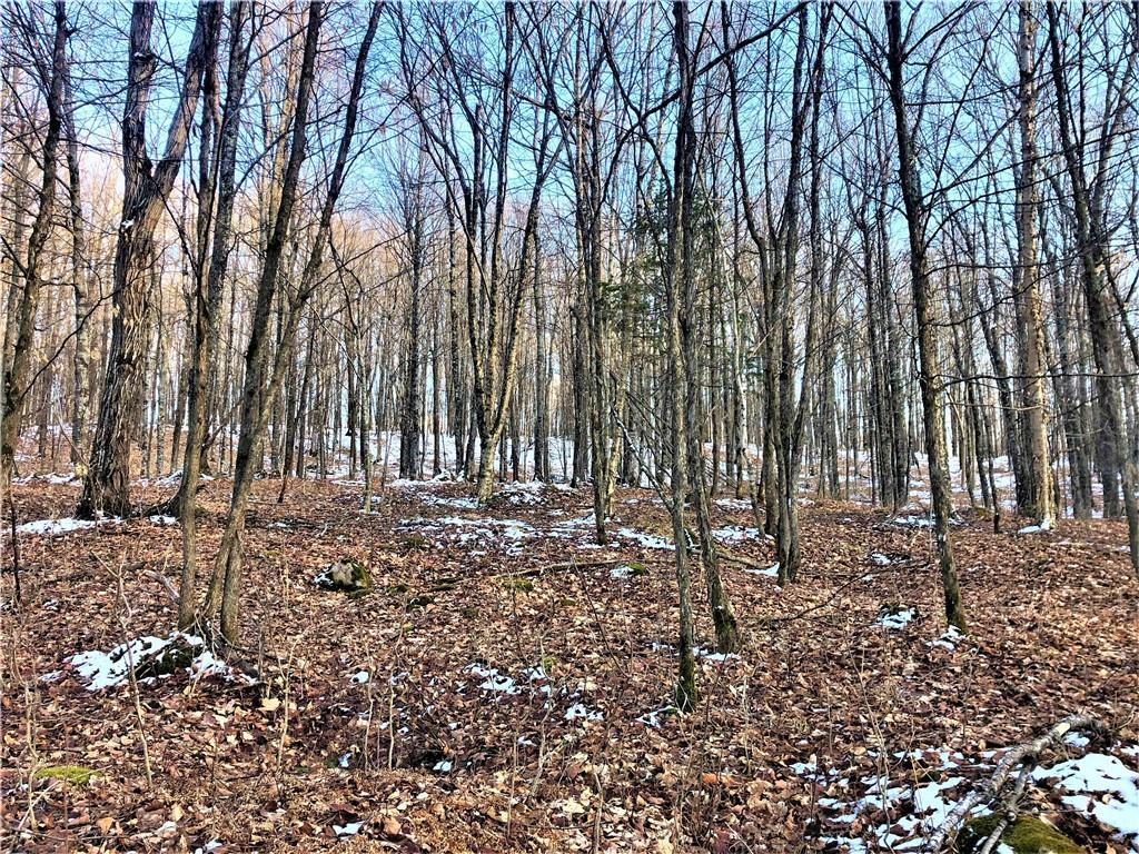 Off Carpenter Creek Road Property Photo - Phillips, WI real estate listing