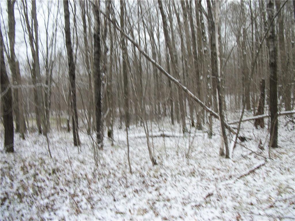 Lot #95 Maple (SPRUCE SUB) Way Property Photo - Birchwood, WI real estate listing