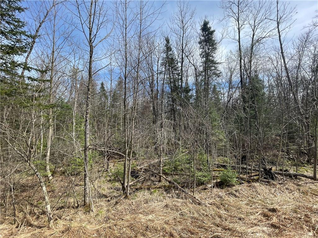 0 State Highway 178 Property Photo - Jim Falls, WI real estate listing