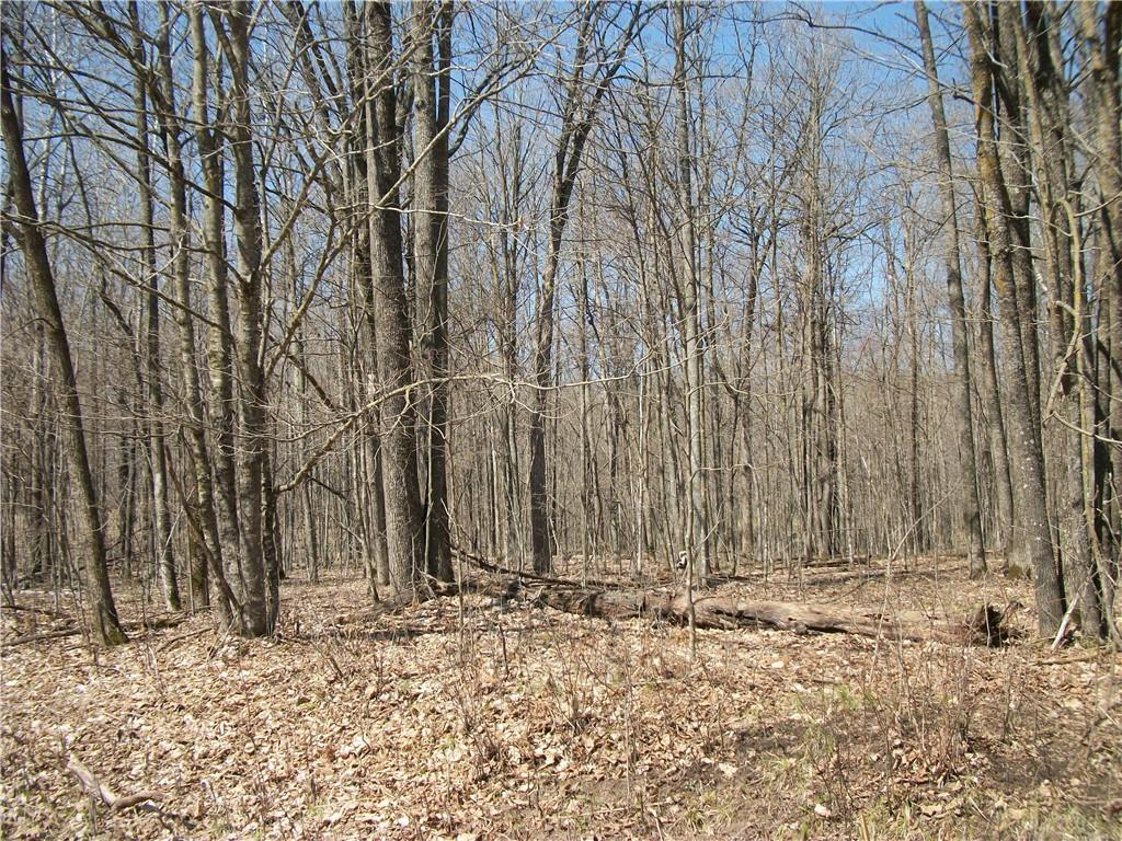 Lot #97 Woods (spruce) Property Photo