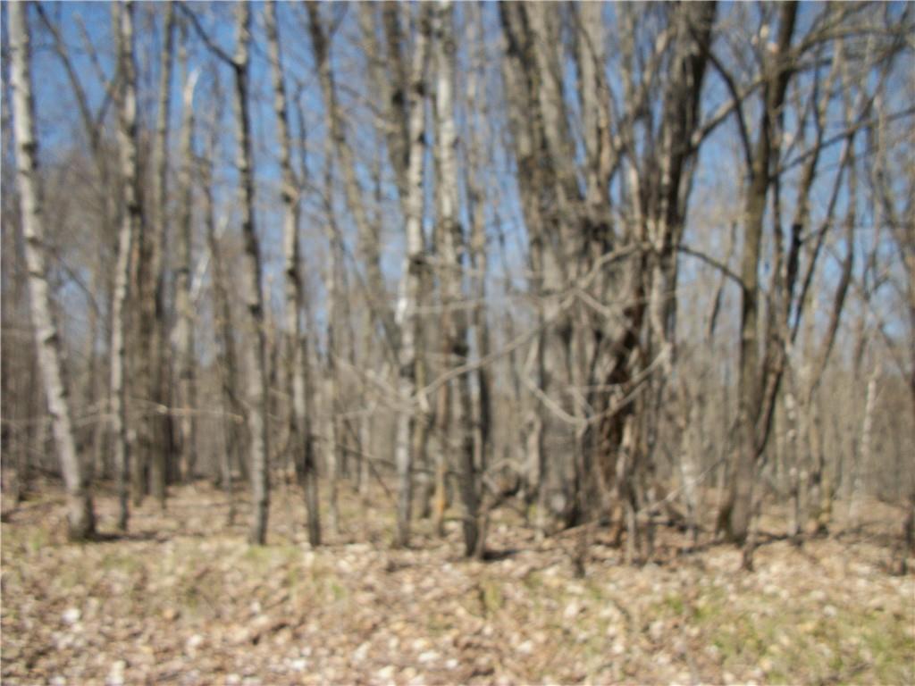 Lot #98 Woods (spruce) Avenue Property Photo