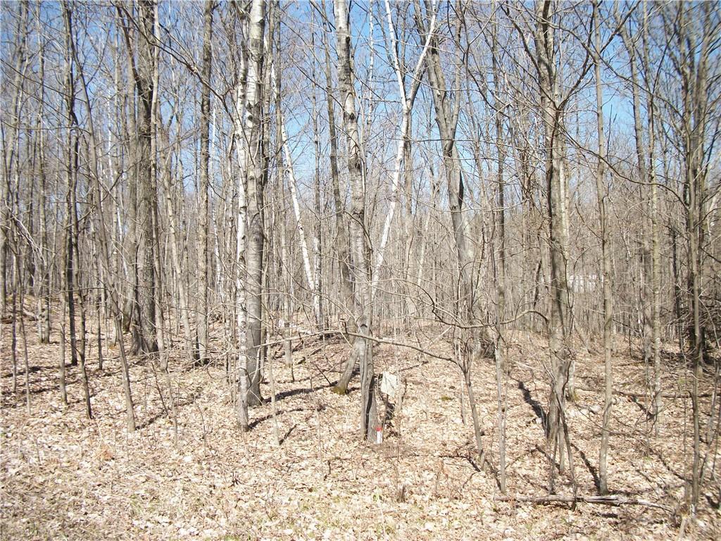 Lot#99 Woods (spruce) Avenue Property Photo