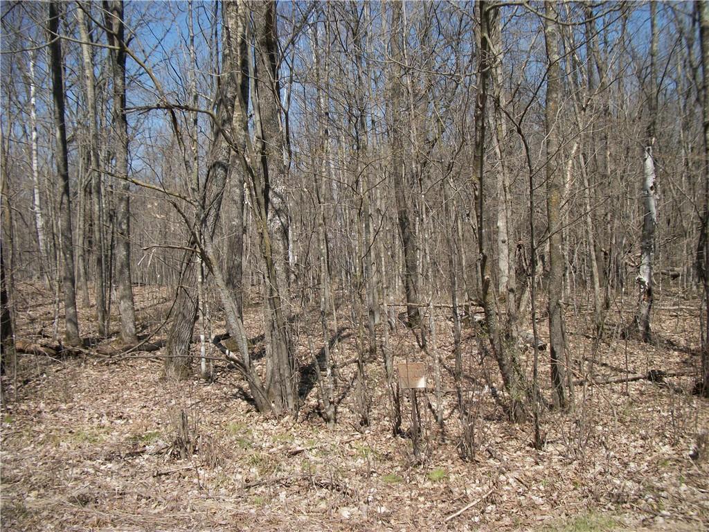 Lot 100 Woods (spruce) Avenue Property Photo