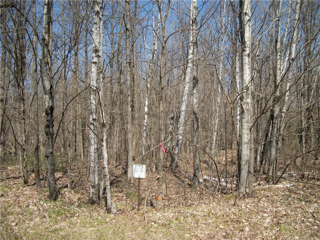 Lot #101 Woods (spruce) Avenue Property Photo