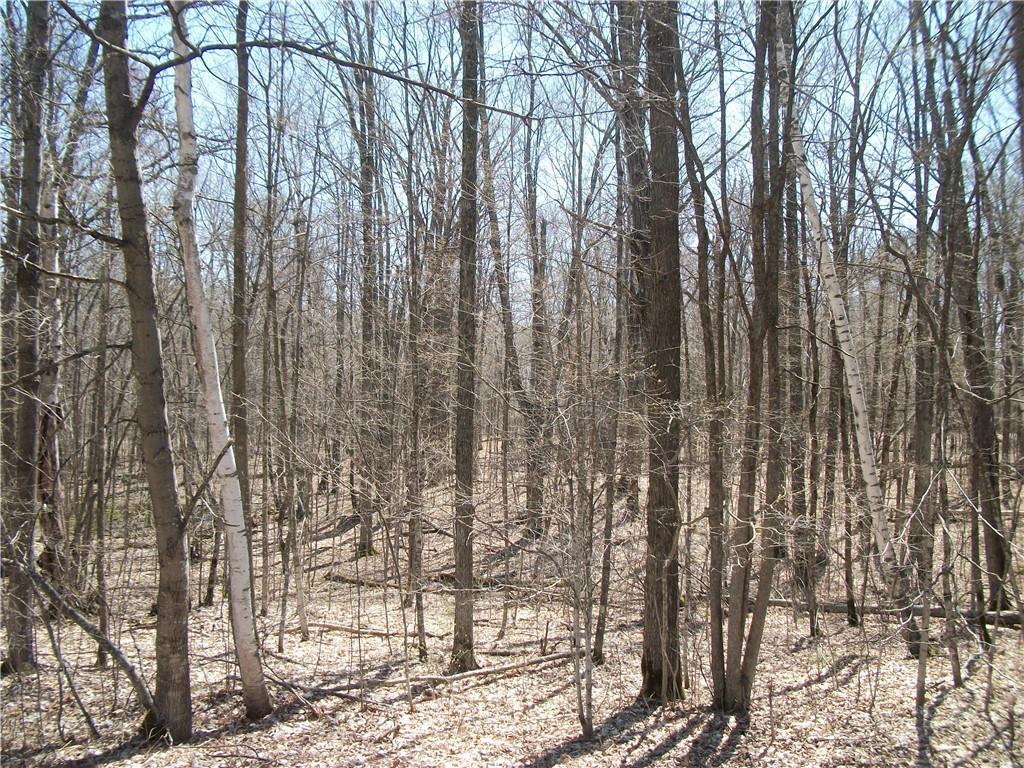 Lot #29 Woods (spruce) Avenue Property Photo
