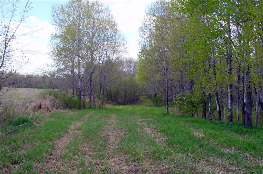 4 Acres On Vine Street Property Photo