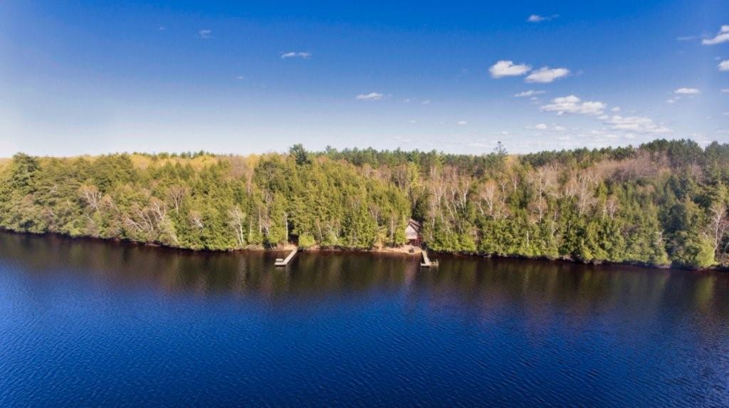 On Lake Shore Drive Property Photo