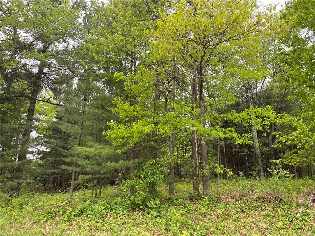 Lot County Hwy F Property Photo