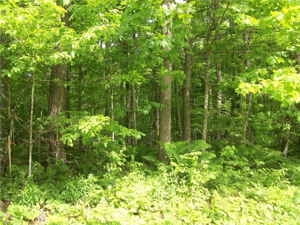 Lot 71& 72 Woods (spruce) Property Photo