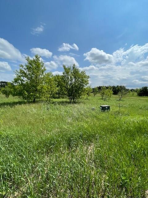 Sunnybrook Real Estate Listings Main Image