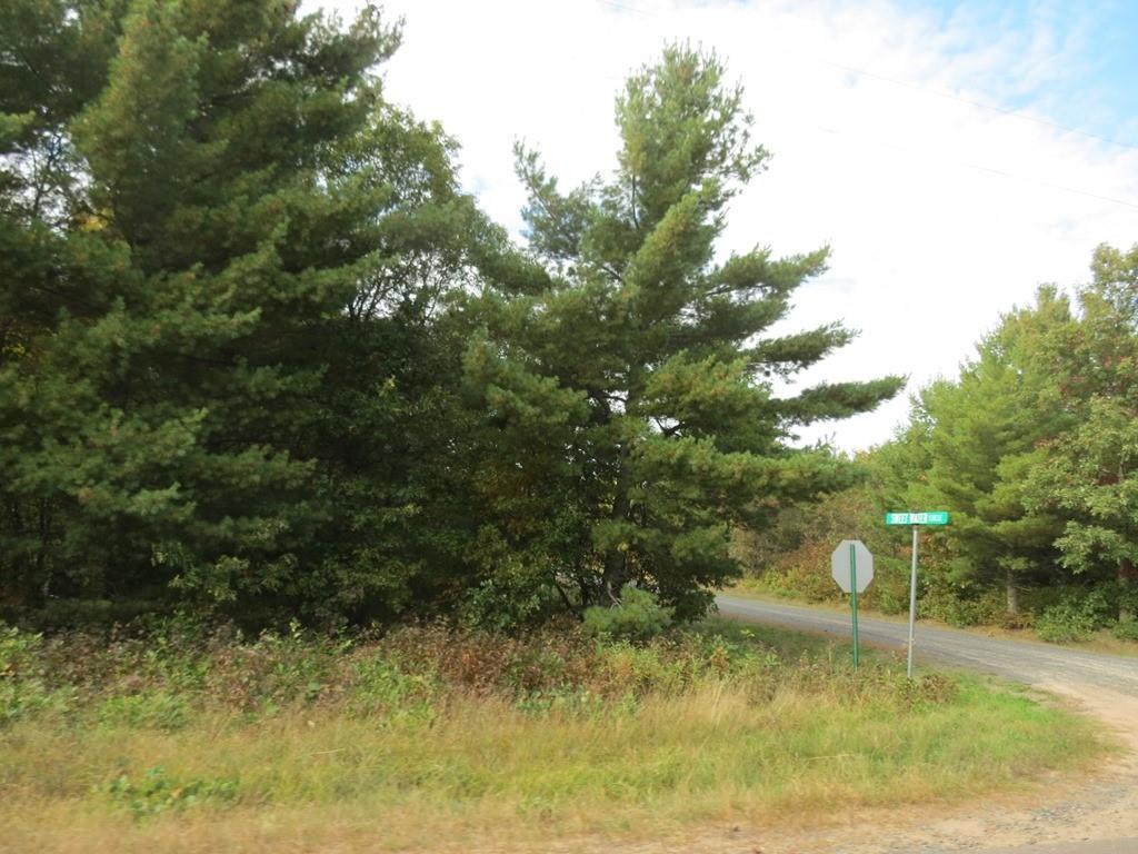 Lot 10 Badger Drive Property Photo - Gordon, WI real estate listing