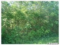 Lot 1 East Pine Street Property Photo - Strum, WI real estate listing