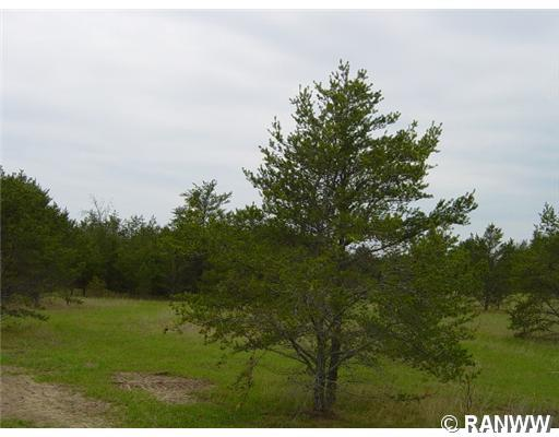 0 Brodi Lane Property Photo