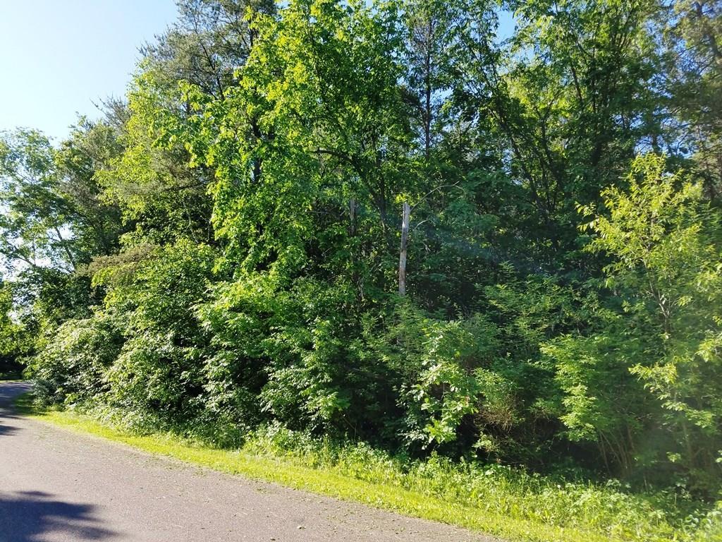 Lot 50 821st Avenue Property Photo
