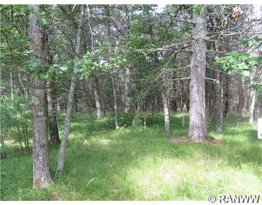 Lot 6 Logan Lane Property Photo - Hatfield, WI real estate listing