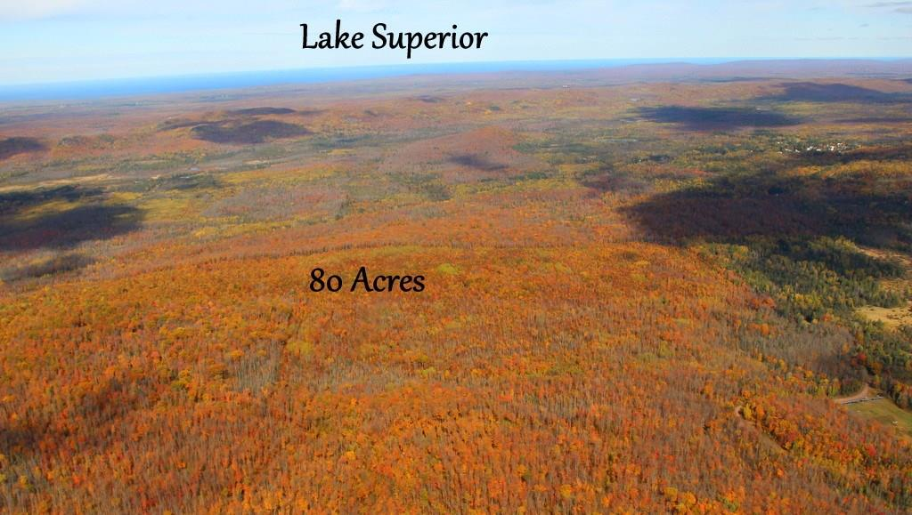 80 Acres Off Snake Track Road, Upson, WI 54565 - Upson, WI real estate listing