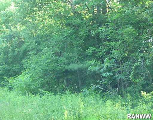 W8870 Timber Trail Property Photo