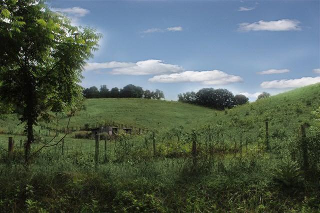 1388 Atkins Mill Road Property Photo 1