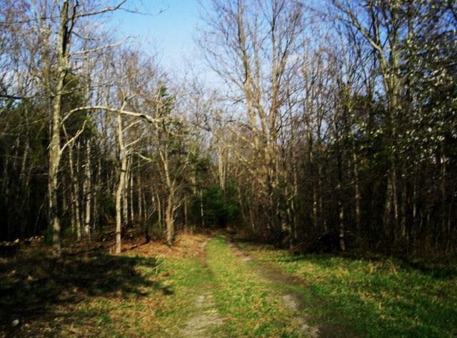 359 Fox Mountain Road Property Photo