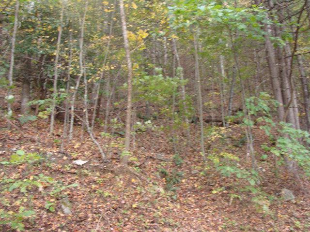 Tbd Cascade Trail Property Photo