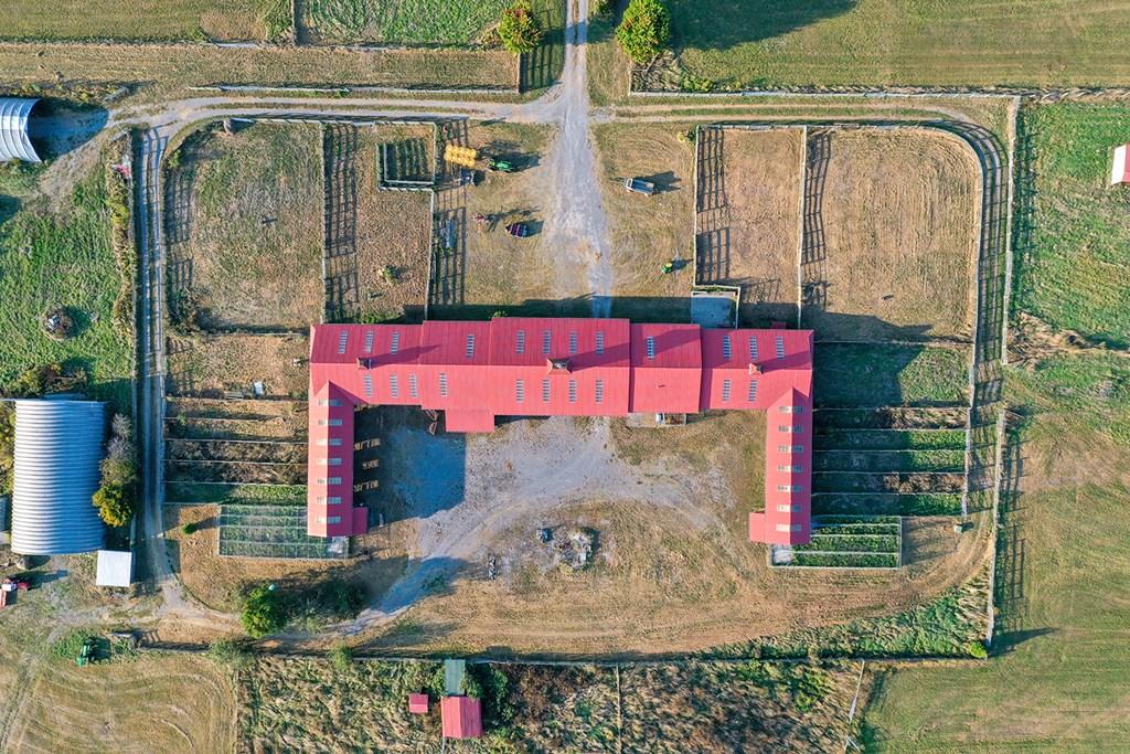 1420 Gose Mill Road Property Photo 6