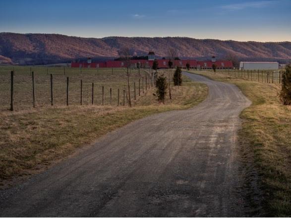 1420 Gose Mill Road Property Photo 39
