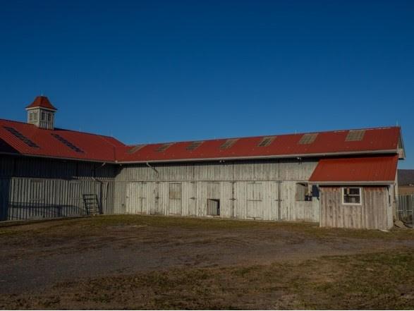 1420 Gose Mill Road Property Photo 53