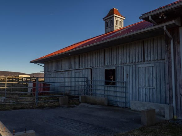 1420 Gose Mill Road Property Photo 54