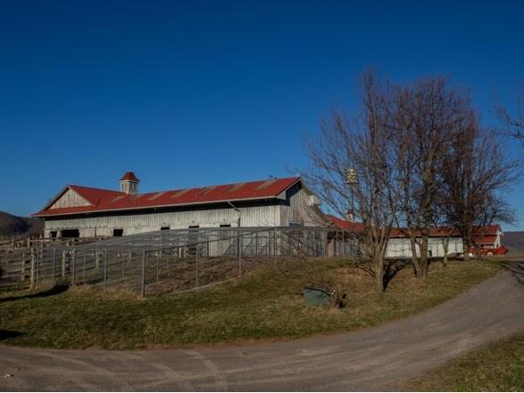 1420 Gose Mill Road Property Photo 62
