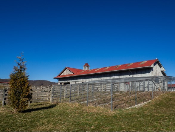 1420 Gose Mill Road Property Photo 68