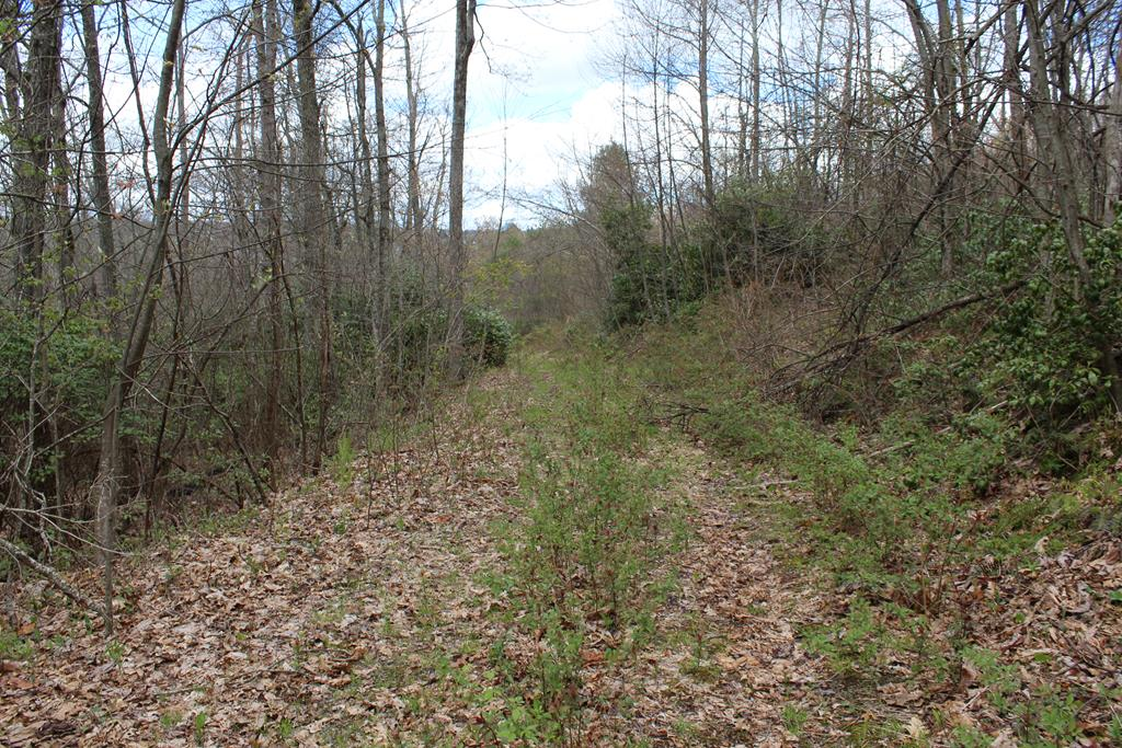 0 Jeb Stuart Highway Property Photo