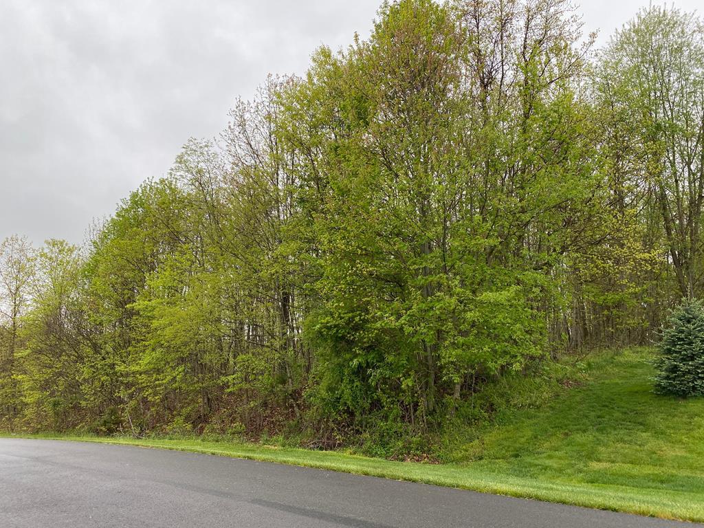TBD Mill Creek Acres Property Photo