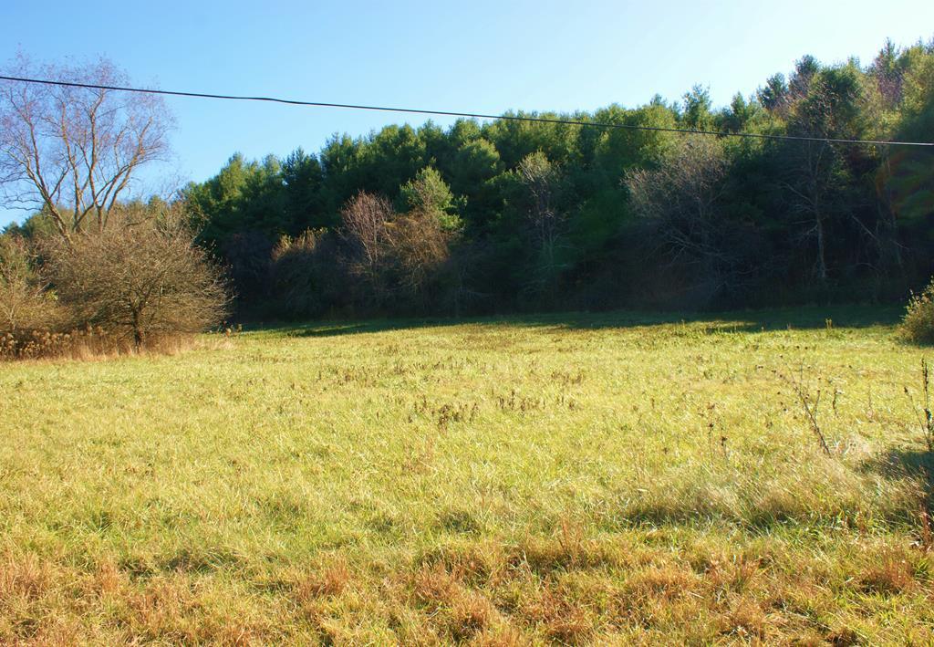 Tbd Chances Creek Rd Property Photo