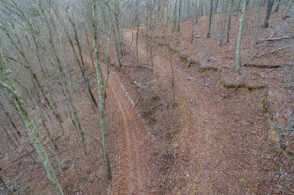 11.5 Ac North Fork River Rd Property Photo