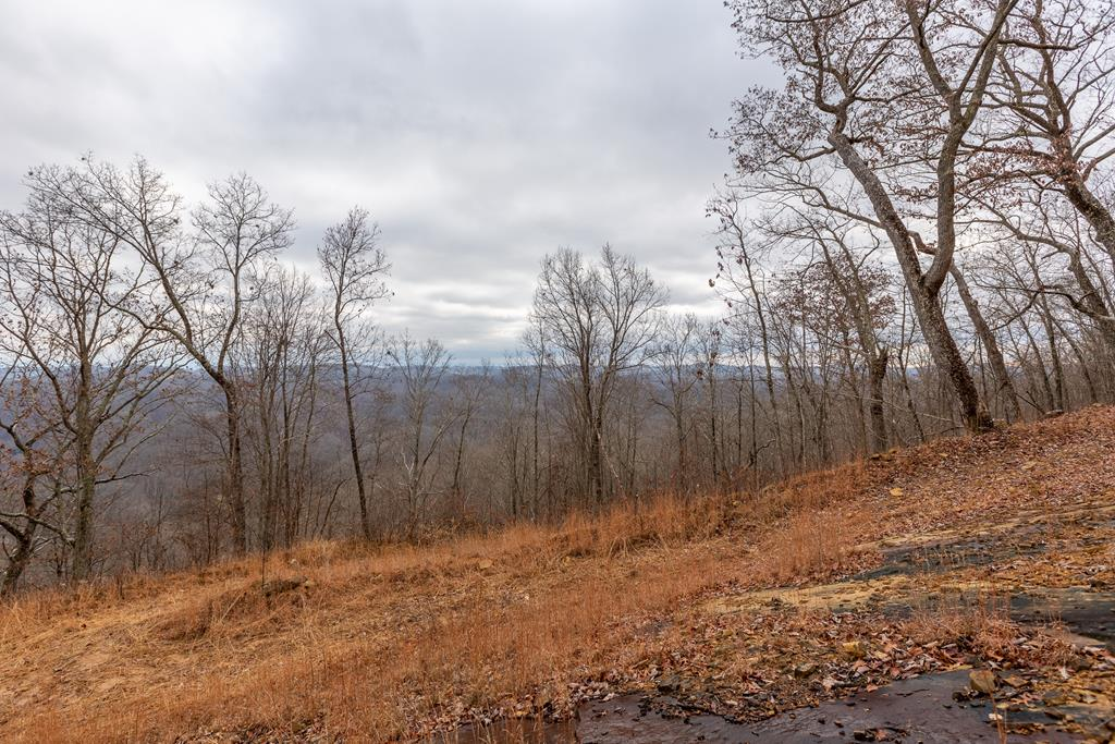 3.15 Ac North Fork River Rd Property Photo