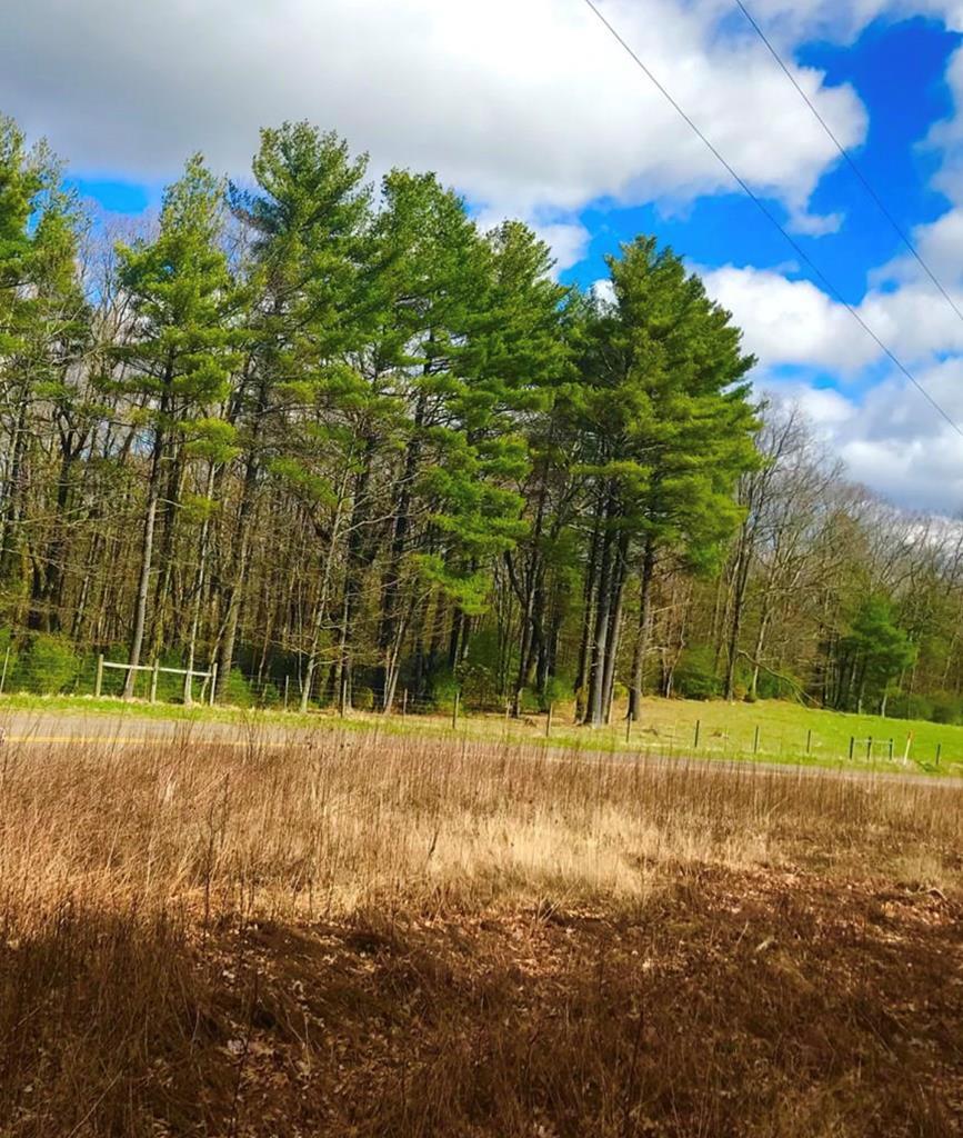 Tbd Harrison Dr. Property Photo