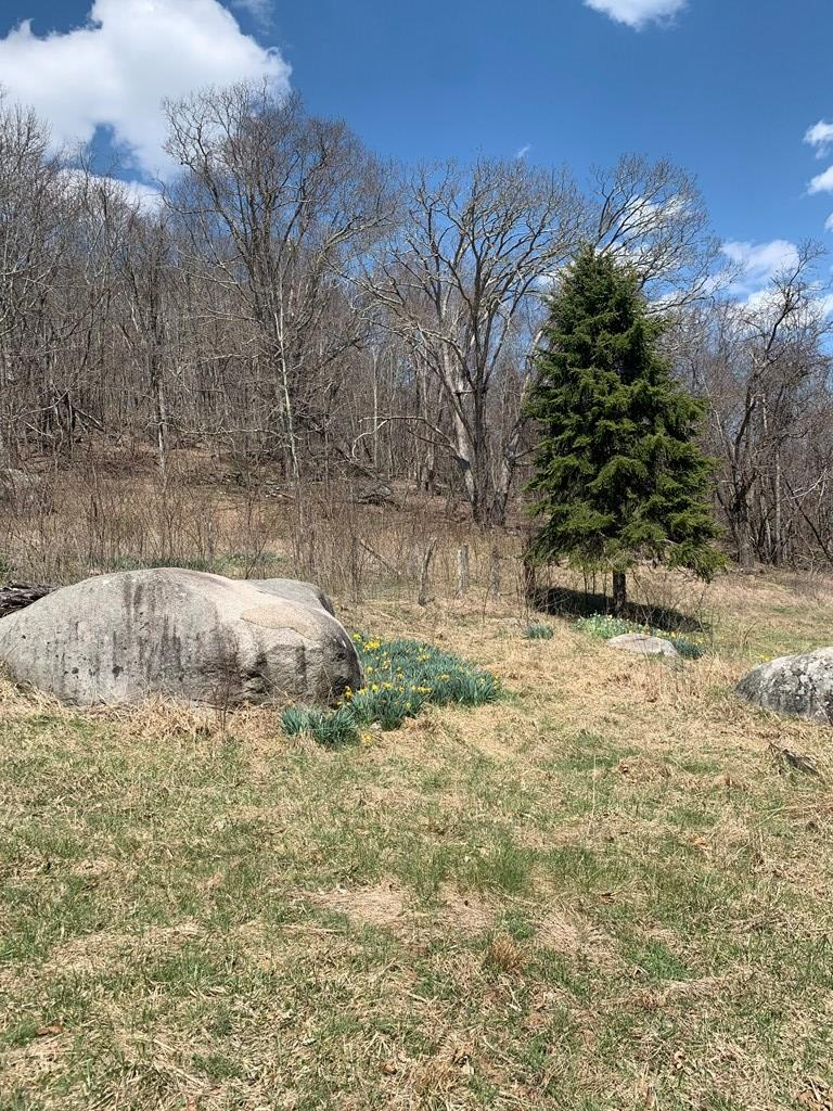 Tbd Rimrock Ln. Property Photo 5