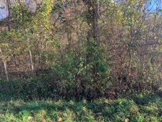 Tbd Lone Ash Rd Property Photo