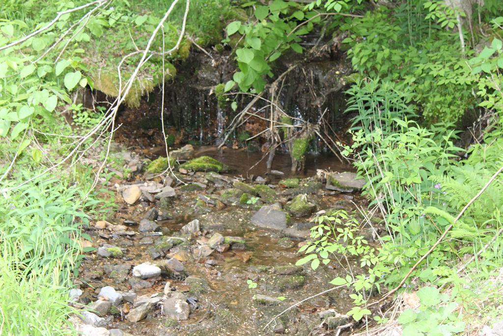 1825 E Fork Ln Property Photo