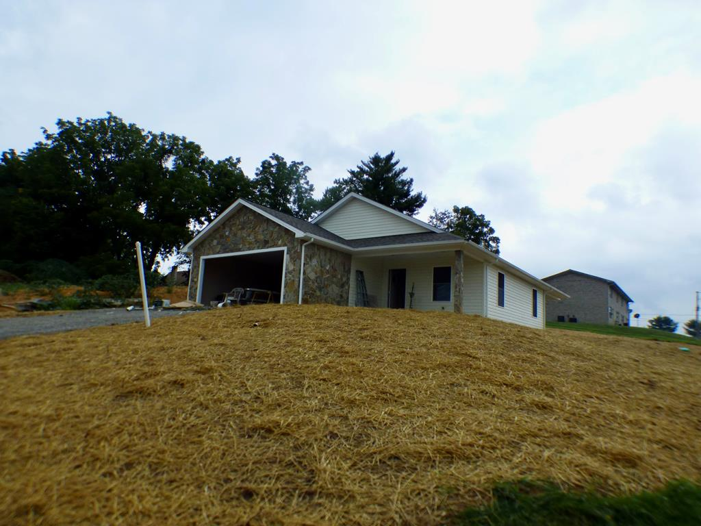 295 Spring Meadows Drive Property Photo 1