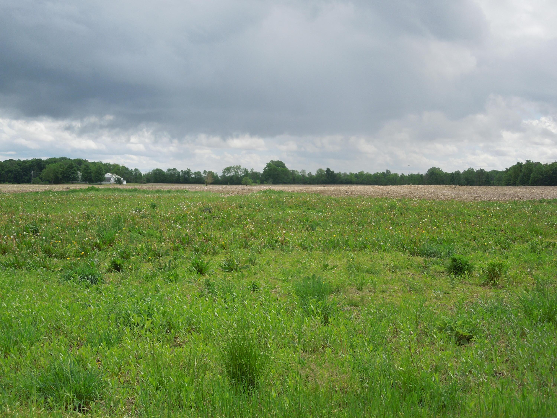 0 Horatio Road Property Photo