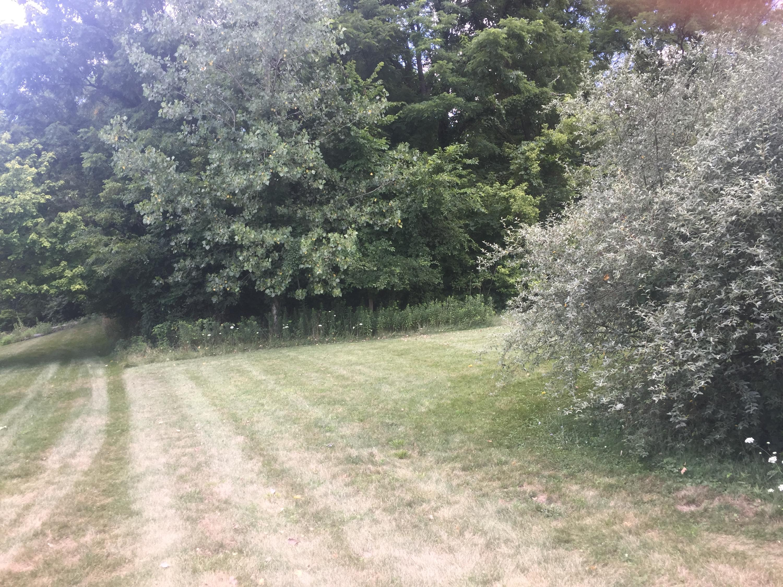 4211 Grey Stone Crossing Property Photo 1