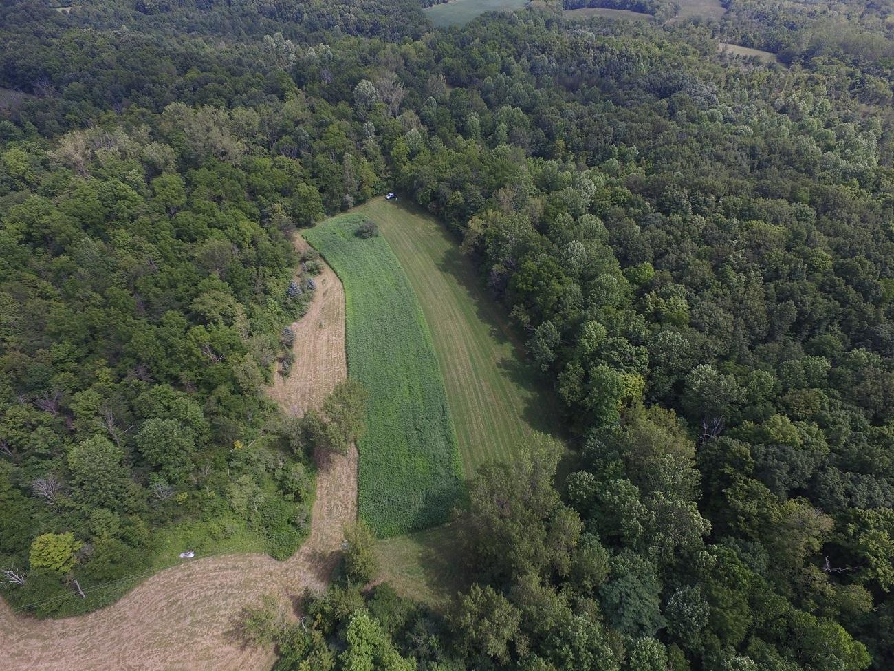 7305 County Road 2 Property Photo 57